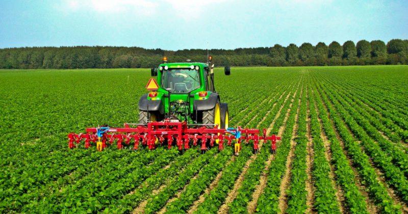 Uso calce in agricoltura - Fornaci Zulian